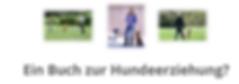 #hundeschule, #hundtraininieren#Trainer #hundtrainier, welpenschuleonline, #onlinetiere, #onlinehundeschule, #adoptierte hunde, #pitbulltrainieren, #dobbermantrainieren#dobbermanschule, #pitbullschule, welpenschule, #hundetrainer  #spielgruppe welpen  #hundeschule  #welpenschule  #hundeschule hund  #mobile hundeschule  #hundeschule welpen  #private hundetrainer
