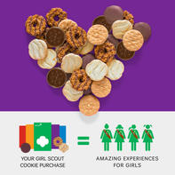 8. Your Local Girl Scouts.jpg