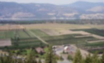 Property & Lake view.jpg