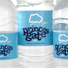 Promotional: Princes Gate 01