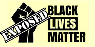 Some Convenient Facts Black Lives Matter Leaves Out