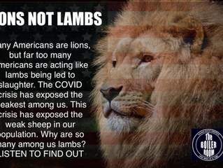 Lions Not Lambs