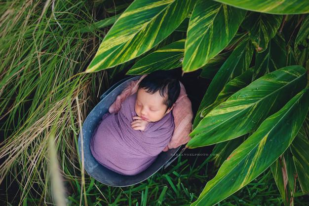 Newborn Photographer Miami