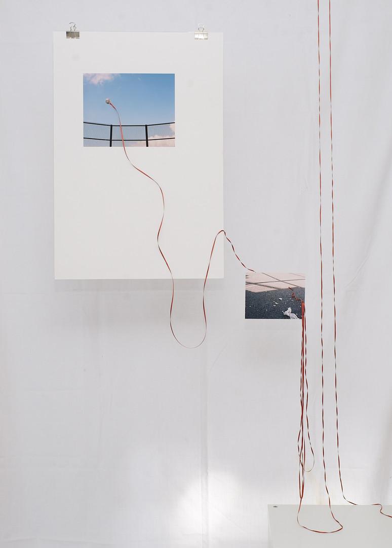 Installation at 35 North Gallery, Brighton.