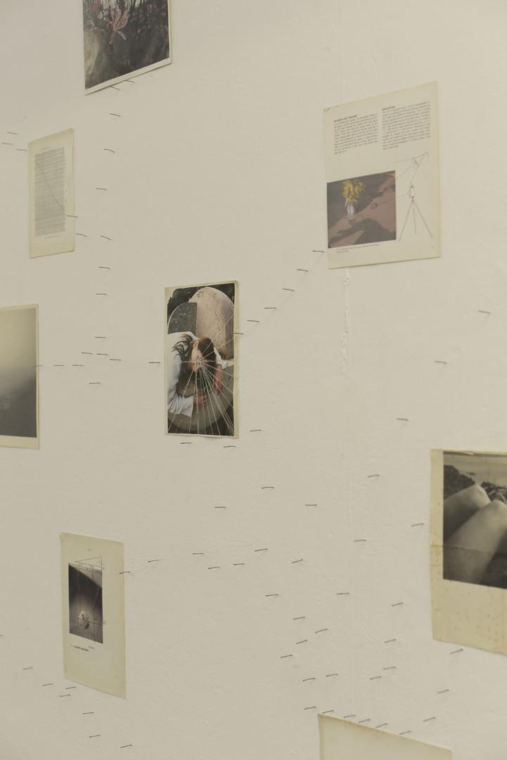 Installation at Freerange shows - Truema