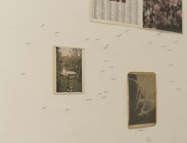 Installation at Freerange shows