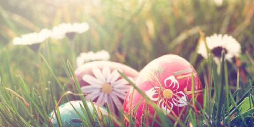 Spring Egg Hunt and Brunch