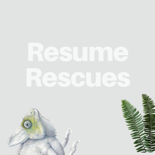 Rescue Your Resume
