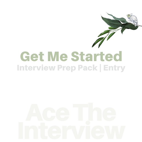 Ace The Interview-Get Me Started | Interview Workbk + Resume Review 50%+