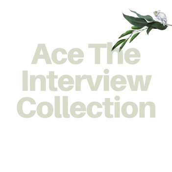 Ace The Job Interview Programs