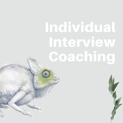 Interview Coaching With Kirsty 1 Hour