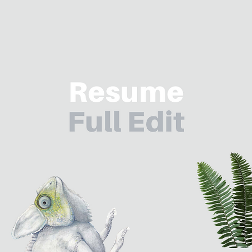 Resume Editing / Revamp