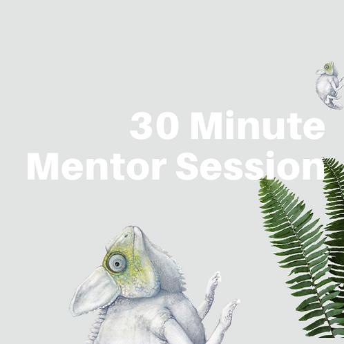 30 Min Mentor Session