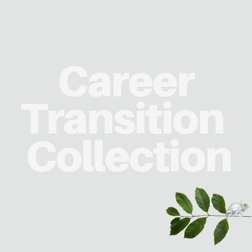 Career Transition Products