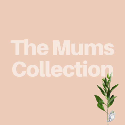 Mums Confidence & Interview Collection