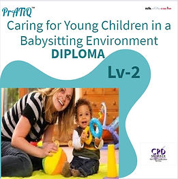 Caring for Young Children in a Babysitti