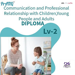 Communication and Professional Relations