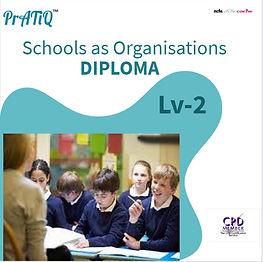 Schools as Organisations.jpg