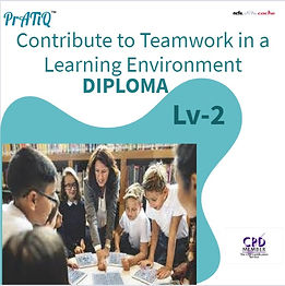 Contribute to Teamwork in a Learning Env