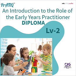 An Introduction to the Role of the Early
