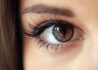 Ideal Eyelid