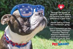 Advertisement for Petsmart