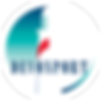 DCC Logo - USE ON COLOURED BACKGROUNDS O