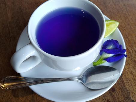 7 Butterfly Pea Flower Benefits