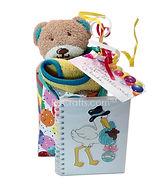 Baby basket in a bag.jpg