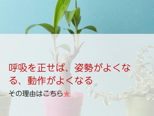 ブリービクス研究会ホームページ