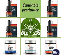 Cannabis og CBD produkt præstations video, som CBD- care4pets forhandler