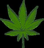 cannabis blad.png