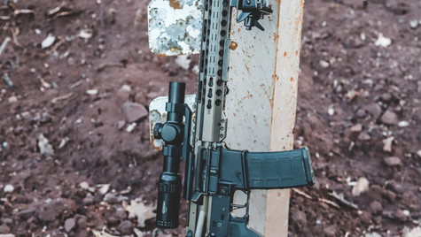 IMG_0409 556 AND RIFLE DT.jpg