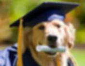 graduating.jpg