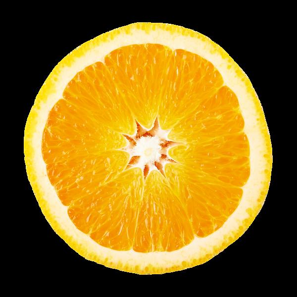 オレンジ輪切り.png