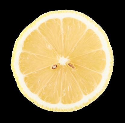 レモン輪切り.png