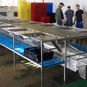 Oyster sorting table