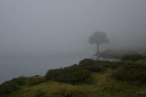 Lac d'Oredon 2017 #5