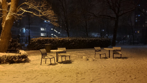 Lonely Snow