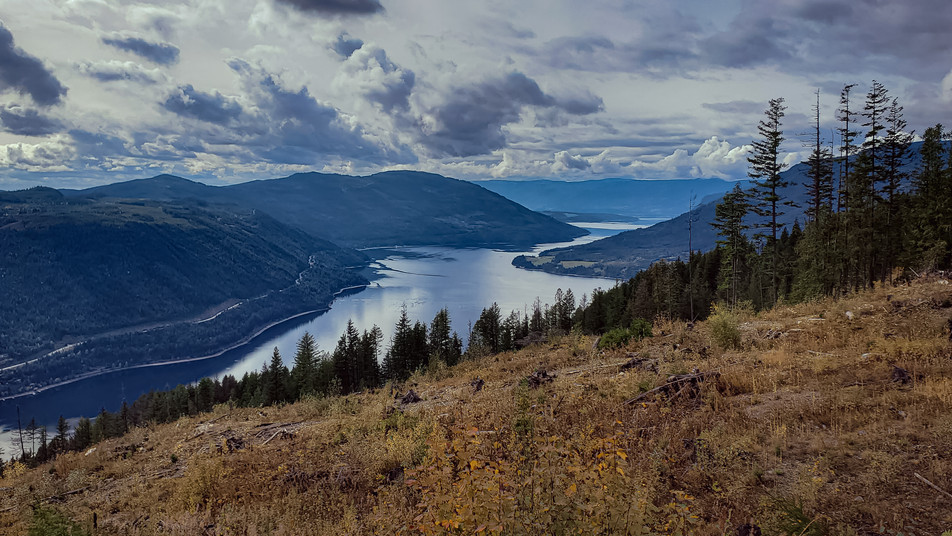 Sicamous Lookout