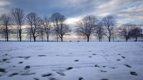 English Bay in Snow