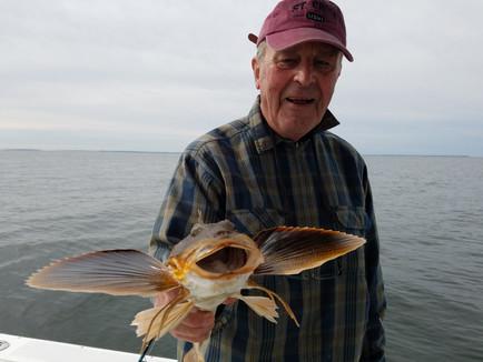 PERFECT FISHING EXPERT?