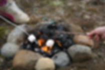 Campfire, camping in the Scenic 6 Park