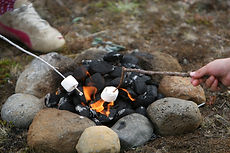 Camp Fire Marshmallows