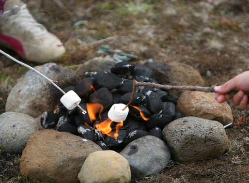 10 Interesting Facts about S'mores