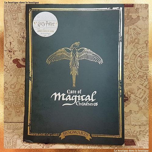 soin aux créatures magiques carnet harry potter