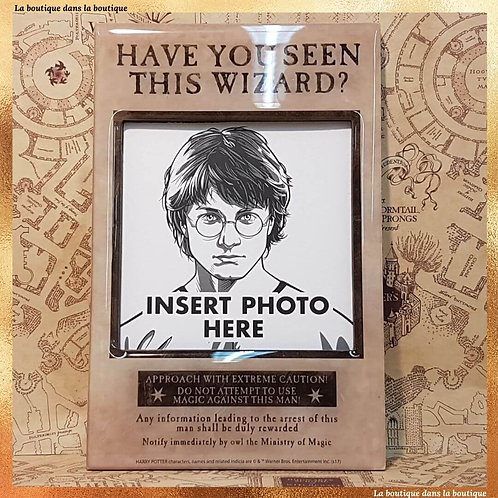 have you seen this wizard harry potter cadre magnétique