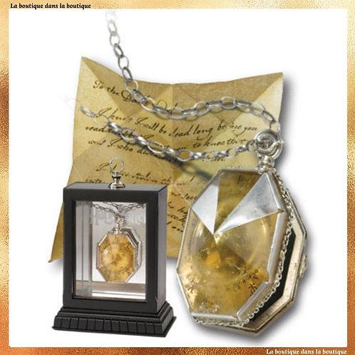 médaillon régulus arcturus black faux horcruxe lettre pour voldemort noble collection harry potter