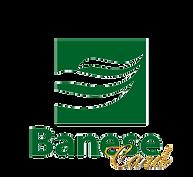 Banese_Individual.png