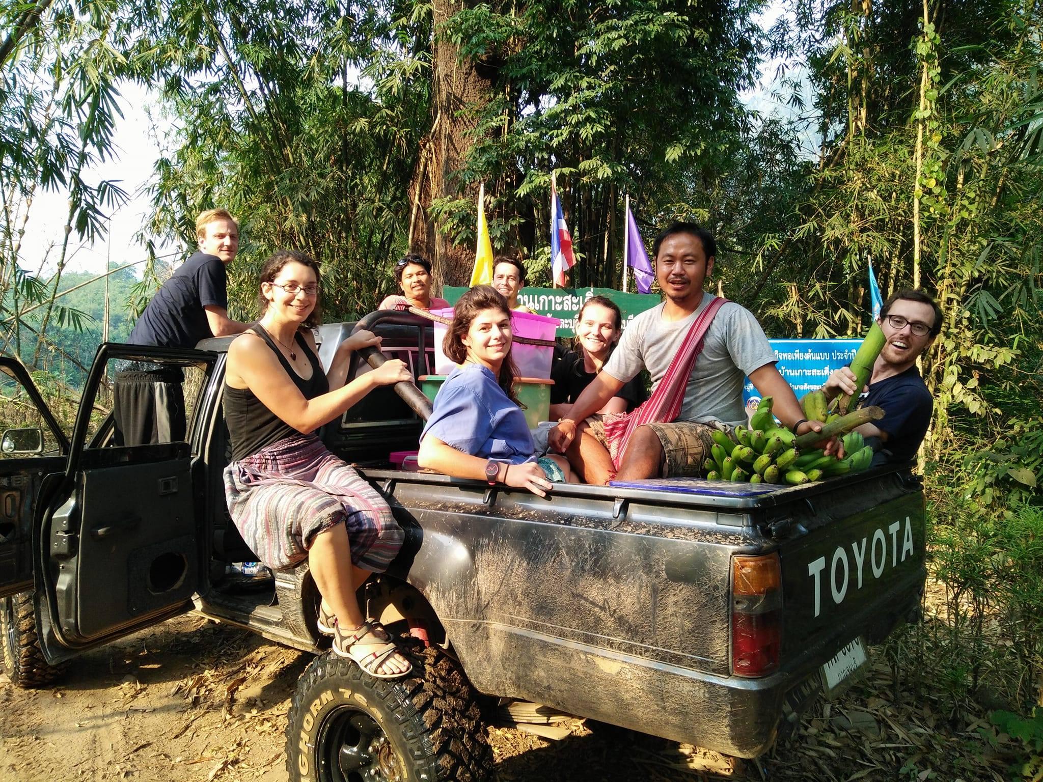 thai animal sanctuary volunteers